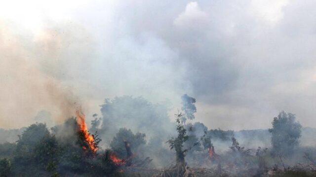 Riau Aakn Bersiap Menghadapi Musim Kemarau