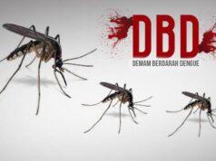Kasus DBD di Riau Meningkat, Sampai Sekarang Sudah Ada 2 Anak Meninggal Dunia