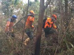Dalam Pencegahan Karhutla Di Riau Kepala BNPB Minta Pemprov Riau Libatkan Tokoh Agama