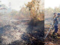 Sudah Ada 6 Tersangka Pembakar Lahan Yang Ditangkap