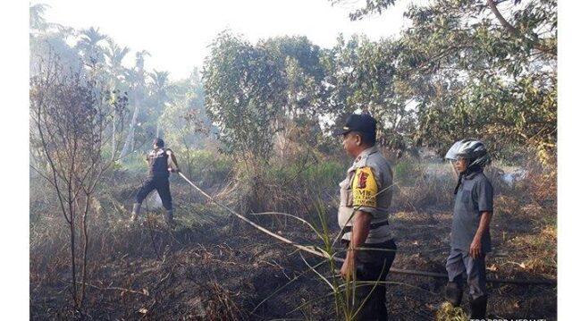 Sekitar 0,2 Luas Hektare di Kepulauan Meranti Terbakar