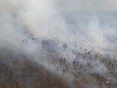 Darurat Bencana Kabut Asap Akan Di Tetapkan Status Siaga Oleh Pemerintah Provinsi Riau