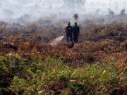 Untuk Tangani Karhutla Di Riau, BPBD Gunakan Anggaran Tak Terduga