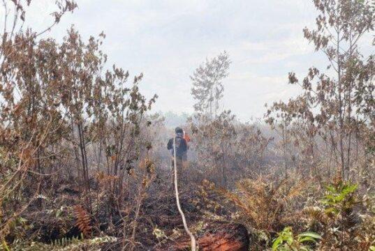 Petugas Mulai Merasa Kesulitan Padamkan Api Akibat Faktor Ini