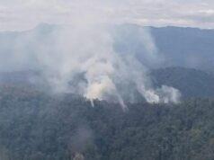Luas Lahan di Riau Yang Terbakar Mencapai 2.415 Hektare , Terluas di Kabupaten Bengkalis