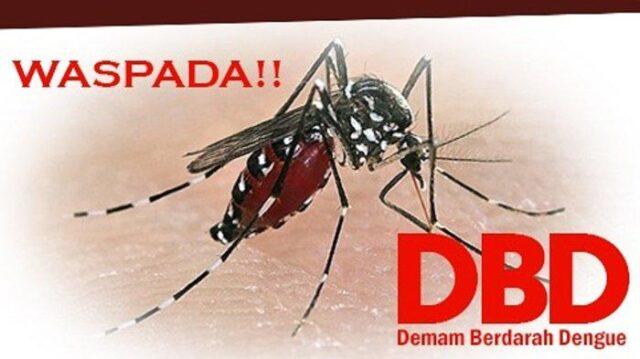Di Sa'at Ada Virus Covid -19, Pemkab Kuansing Riau Sempat Tetapkan Status Siaga Satu DBD