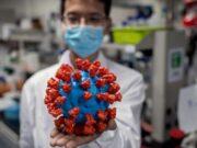 WHO Umumkan Kabar Buruk. Sebut Virus Corona Tak Bakal Hilang di Dunia